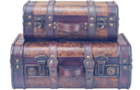 Leather travel trunk and luggage