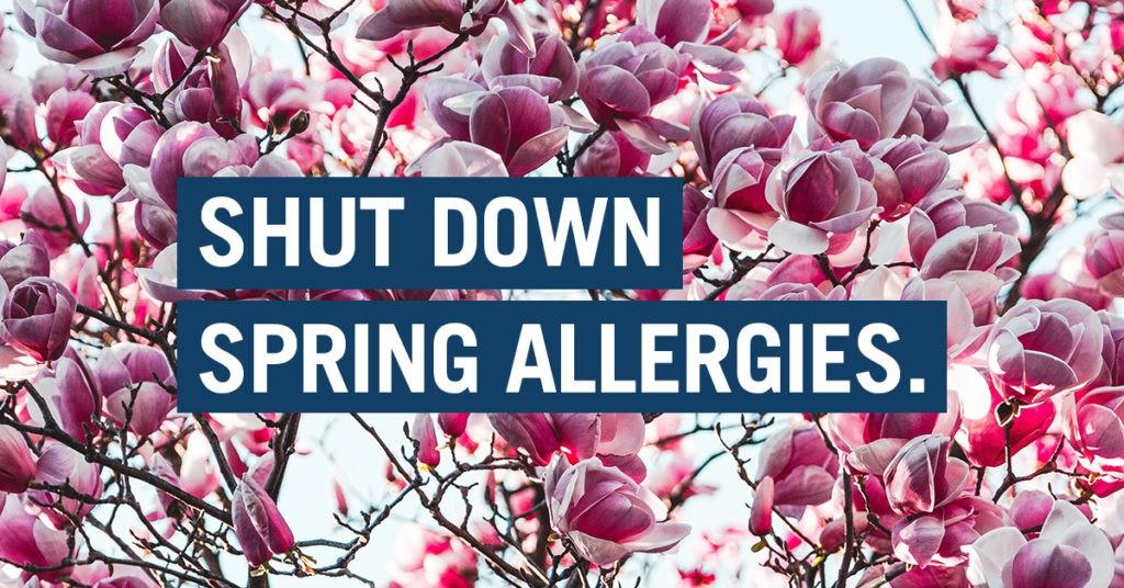 Shut Down Spring Allergies